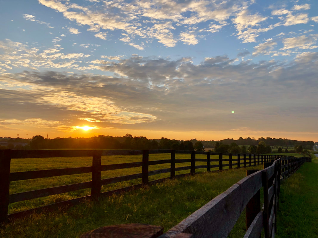 Kentucky horse farm sunrise beyond rail fences, What Do You Need To Know About Preparing A Memorial? YourCreativeChord.com